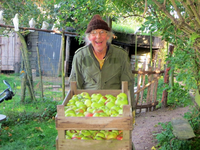 Our neighbor, Hans, the woodcarver (and apple picker)