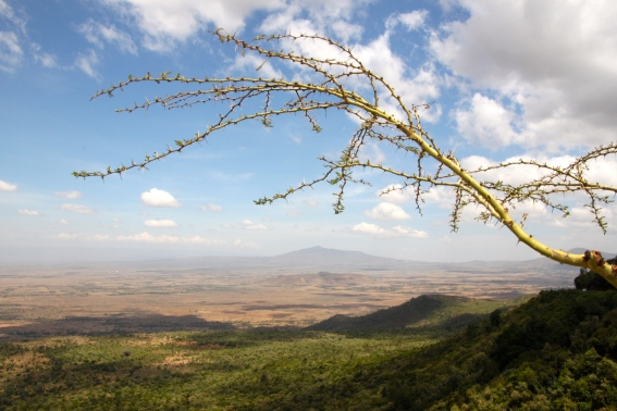 View of the Great Rift Valley below us