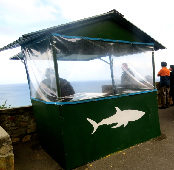 Shark spotting station along the mountain pass