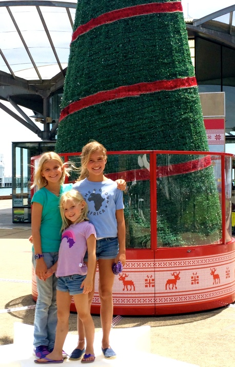 Exploring Geelong's holiday decor