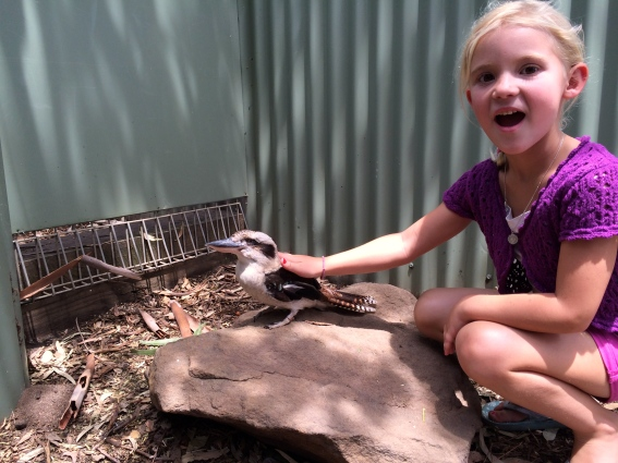 Thayer pets a Kookaburra bird, whose chirping sounds like laughter