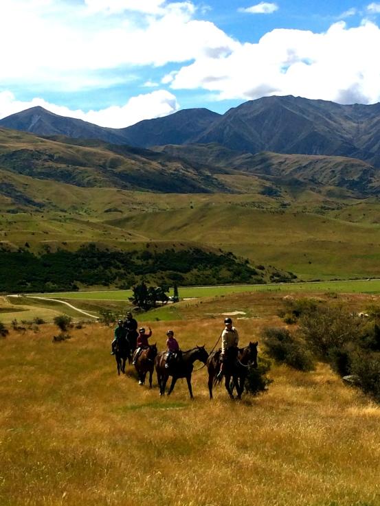 Horse trekking through the hills