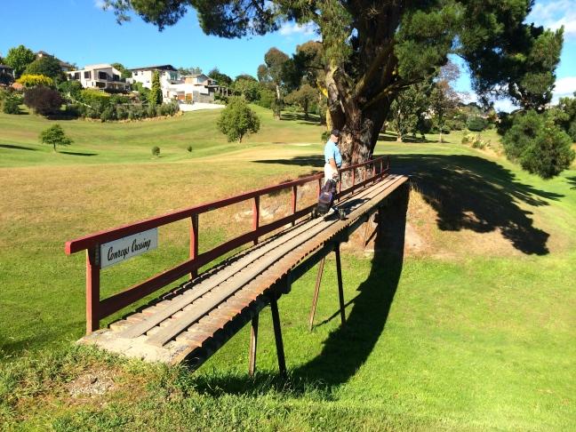 Timaru golf course
