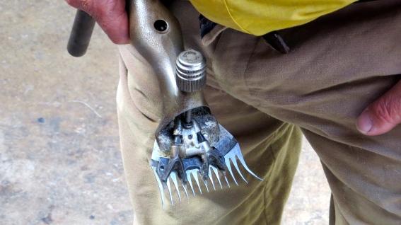 sheering tool