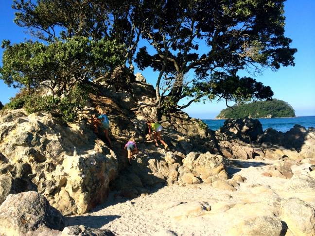 The girls climbed the rocks and trees