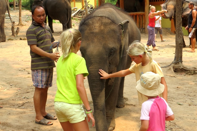 Schuyler, Zoe and Ysabel get friendly with one of the younger elephants at the camp