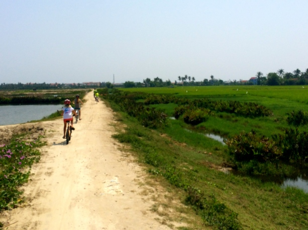 Cycling through the countryside