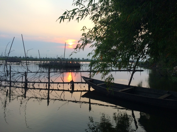 Sunset over the rice paddies