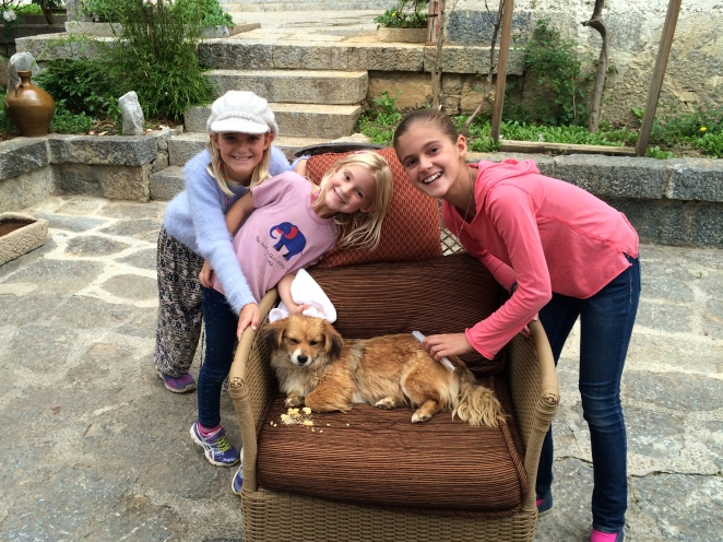 "Once back at the hotel, the girls formally adopted ""Ginger"" and gave her a doggie spa day complete with bath, food, water, and a lot of pats. That's one lucky stray dog!"