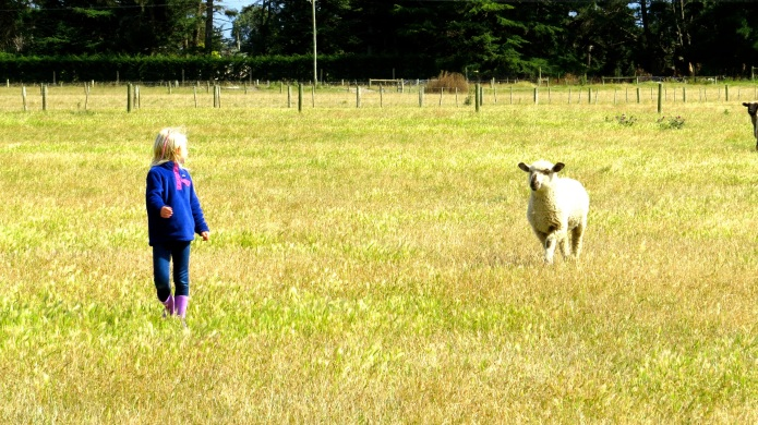 With her favorite lamb, Mary, at Pete's Farm Stay. New Zealand