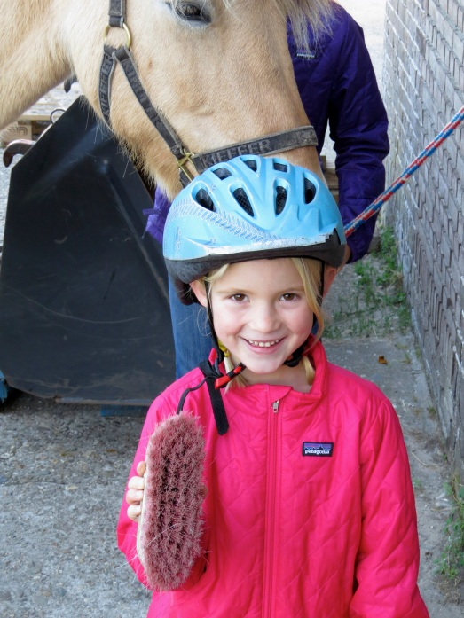 Horseback riding, Bergen, North Holland