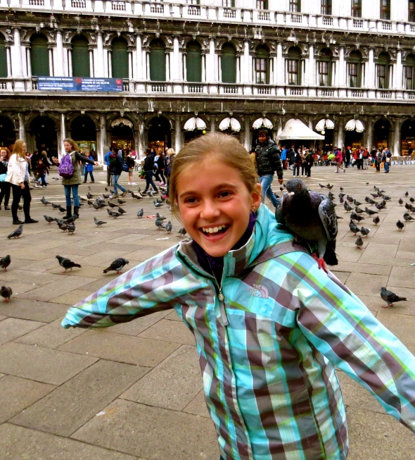 Pigeon encounters in Venice